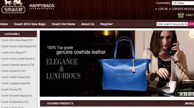 Advertising counterfeit goods - fake website