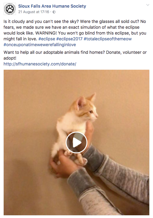A cute video from a South Dakota animal shelter